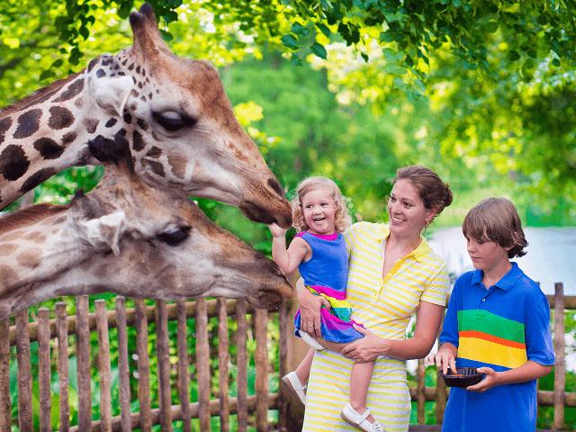 Rodinka s deťmi v ZOO